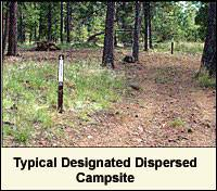 Dispersed Camping Site