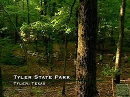 Tyler State Park In Texas