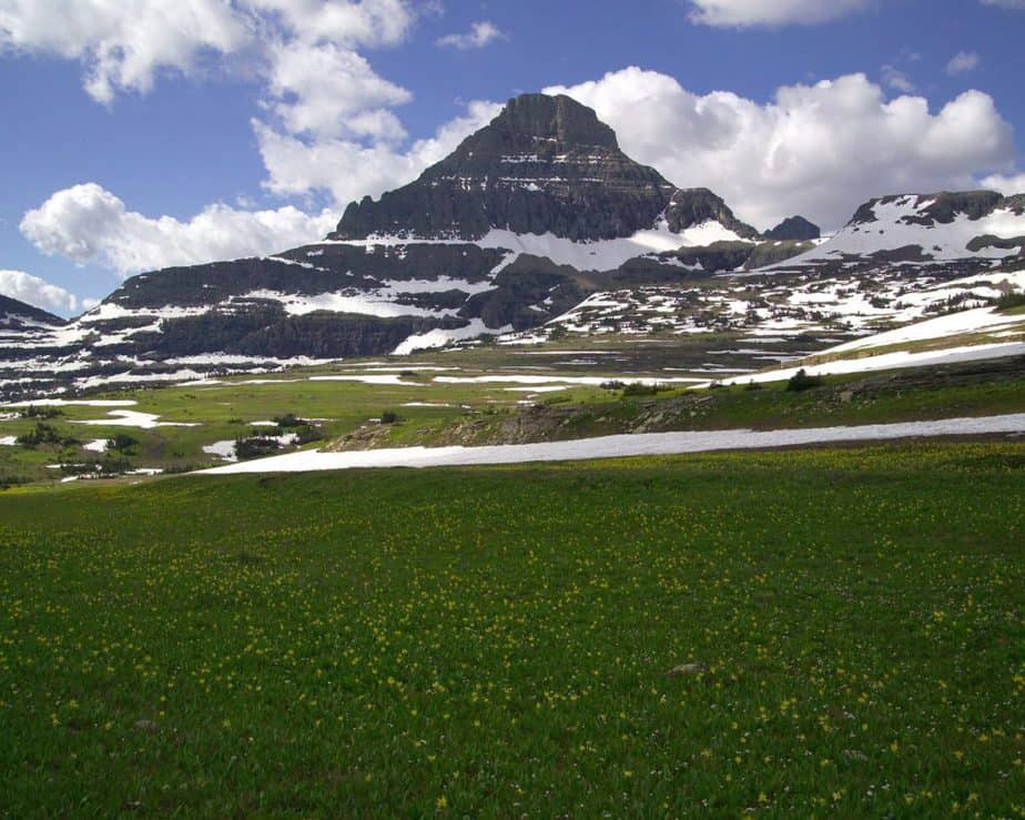 Logan-Pass-Mount-Reynolds-Glacier-National-Park-Montana
